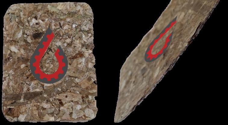 Bio Composite: Seaweed